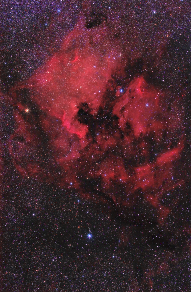 NGC 7000 & IC 5070 (Ha + RGB),                                Scott Davis