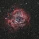 Rosette nebula NGC2244,                                Doc_HighCo