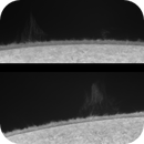 Halfa: Solar Refractor 228 (FL=7.850mm)  Daystar Quark Chromosphere Version  ASI174MM,                                Alessandro Bianconi