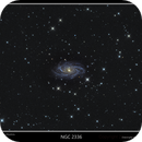 NGC 2336,                                rflinn68