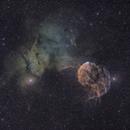 IC443 (Jellyfish Nebula, Sh2-248) and IC444 (Sh2-249), wide field,                                snakagawa