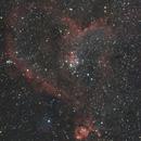 IC 1805 & IC 1795 / Heart & Fish Head Nebulas,                                Gregor Vojščak