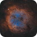 IC 1396 - The Elephant in the City,                                Axel