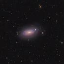 M63 Halpha and LRGB version -the Sunflower galaxy,                                Arnaud Peel