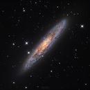 NGC253 from Lijiang, China,                                Ray Liao