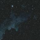 IC 2118 sorciere plus clair,                                stseiya