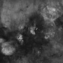 On the Scorpius - Sagittarius Border, With Stars,                                John Gleason