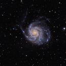 M101 rev 3,                                mackiedlm