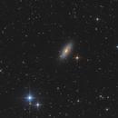 NGC 2841 - The Tiger's Eye Galaxy,                                Bernhard Zimmermann