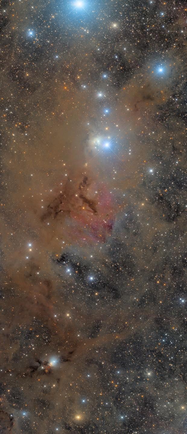 Perseus molecular cloud,                                Steed Yu