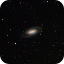 NGC 2903,                                Ted D.