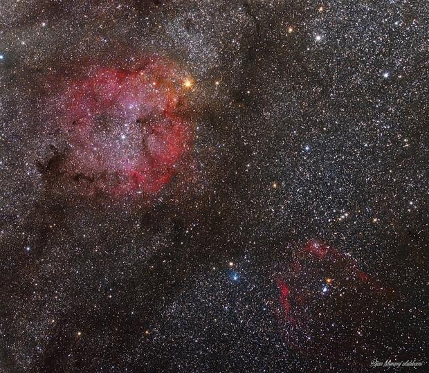 IC1396 nebula, FLYING BAT nebula (sh2_129),                                Bijan Moravej ala...