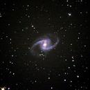 NGC 1365,                                raymo