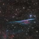 Herschel's Ray - NGC 2736,                                Terry Robison
