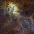 SH2-132 Lion Nebula,                                Asgartt