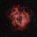 Rosette Nebula,                                John