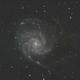 M101 with Optolong L-Pro,                                Ken Rockelein
