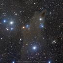LDN1235, VdB 149, VdB 150 - The Dark Shark nebula,                                Yuzhe Xiao