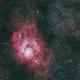 Lagoon and Triffid in Sagittarius,                                Larry S
