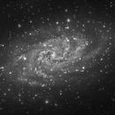 Galassia M33 del Triangolo,                                Alessandro Speranza