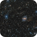 NGC 6951,                                Toshiya Arai
