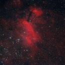 The Prawn Nebula,                                Fabiano B. Diniz