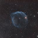 SH2-308: Dolphin Head Nebula,                                pyali