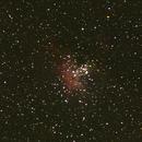 M16 Eagle Nebula,                                Thomas