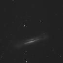 Hamburger Galaxy (NGC 3628),                                Jim Meeker