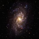 M33 - The Triangulum Galaxy,                                Patrick Cosgrove