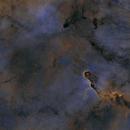 Elephant Trunk Nebula Starless,                                Dan Pelzel