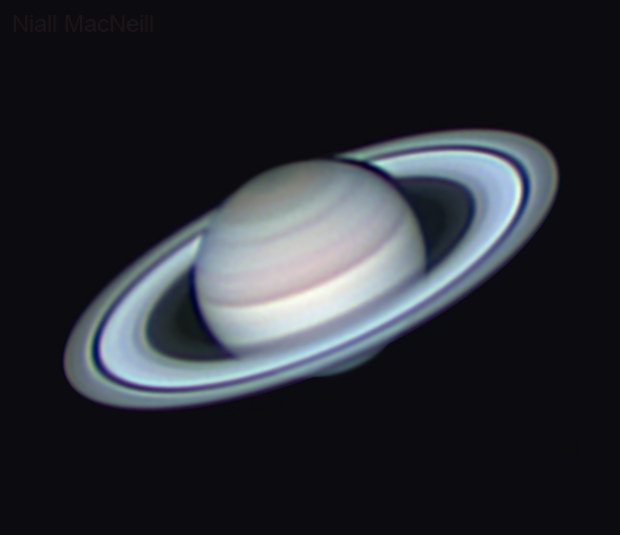 Saturn against the blue of the morning sky,                                Niall MacNeill
