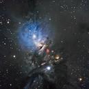 NGC 1333 - The Embryo Nebula,                                Timothy Martin & Nic Patridge
