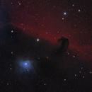 Horsehead and Flame Nebulae,                                Gregg