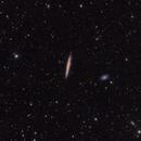 NGC 4517 in Virgo,                                Rodney Watters