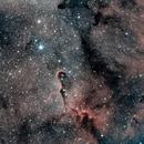 IC1396 - Nébuleuse de la trompe d'éléphant,                                topcao