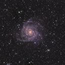 IC 342 in LRGB,                                Jürgen Ehnes