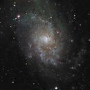 M 33,  NGC 604,  NGC 595,  NGC 588,                                Jean Vallières