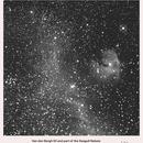 Van den Bergh 93 and part of the Seagull Nebula in H alpha light,                                Lawrence E. Hazel