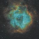 Rosette Nebula in SHO,                                MatsNielsen