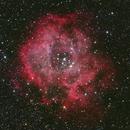 Rosette Nebula - LRGB,                                Todd Anderson
