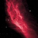 California Nebula,                                rrobbins