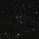 M44 - Beehive Cluster,                                Elvie1
