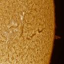 Solar chromosphere ad prominence 20210425,                                Sergio Alessandrelli