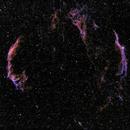 Cygnus Loop,                                DustSpeakers