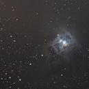 Iris Nebula NGC 7023,                                Michael Southam