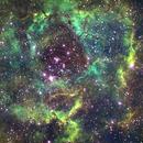 C49 Rosette Nebula-NGC 2237-my first Habble palette,                                Adel Kildeev