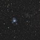 NGC7129 und NGC7142,                                wittinobi