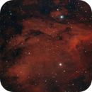 Pelican Nebula,                                Steve Siedentop