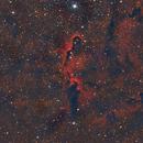 Elephant Trunk IC 1396 3nm Ha + LRGB,                                Nucdoc